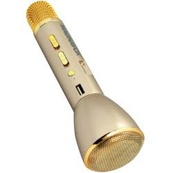 Portable Karaoke Microphone and Speaker